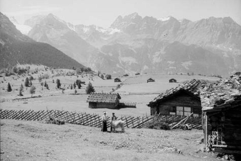 Alphütten im Gebiet Oberfeld auf dem Haldi – Aufnahme um 1910.